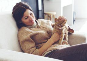 Haustierhaltung von Gewobag Mieterin