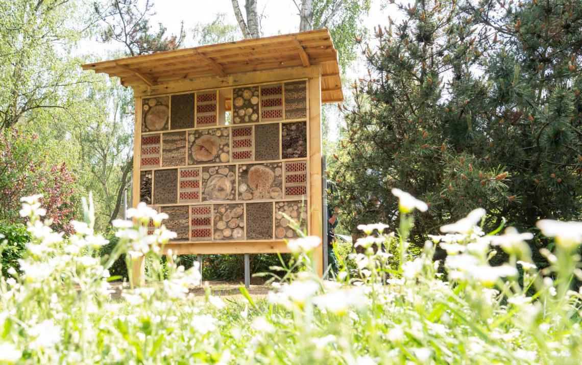 Ein Insektenhotel steht auf einer Wildblumenwiese, die die Mieter der Gewo-bag mit den KiezkordinatorInnen umgesetzt haben.