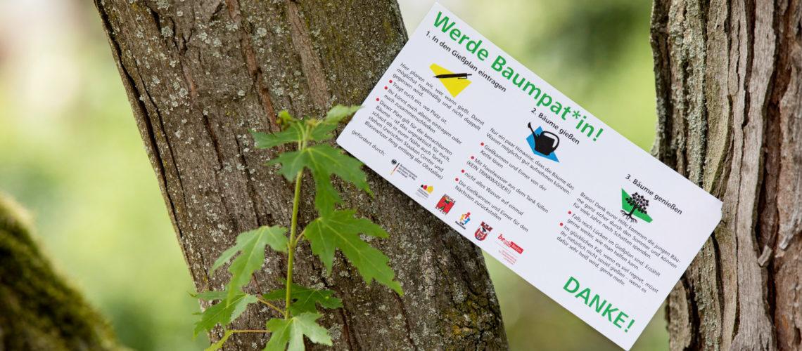Flyer zur Baumpatenschaft an einem Baum.