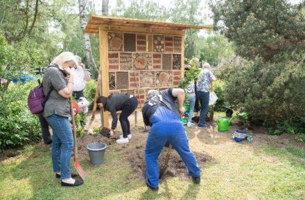 Insektenhotel im Kemmannweg für Klimaschutz