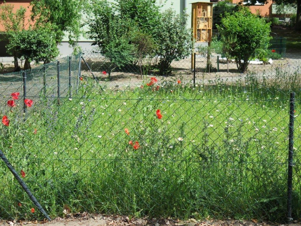 Insektenhotel Hofackerzeile für Klimaschutz