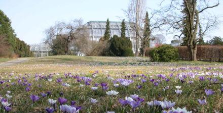 Osterspaziergang im Botanischen Garten