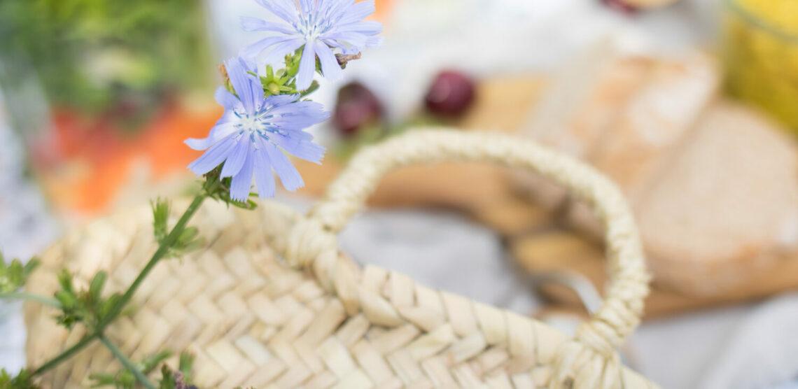 Ein Picknick-Korb auf einer Decke